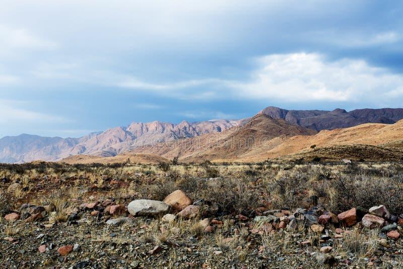 意想不到的纳米比亚moonscape风景全景  图库摄影