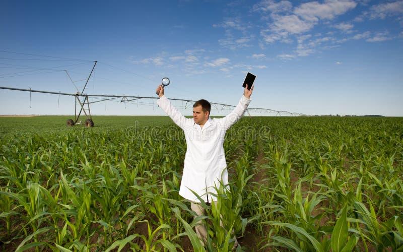 满意的农艺师 库存照片