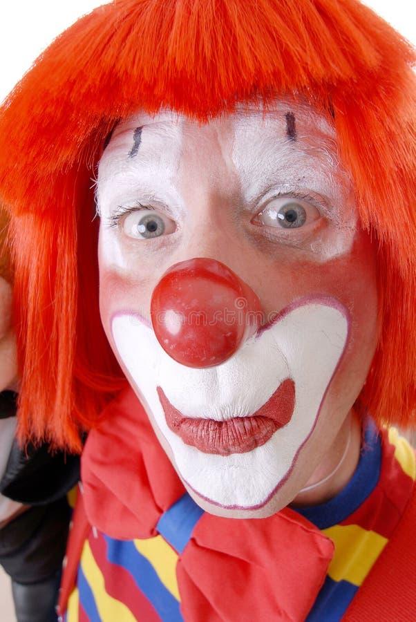 愚蠢的小丑 库存图片