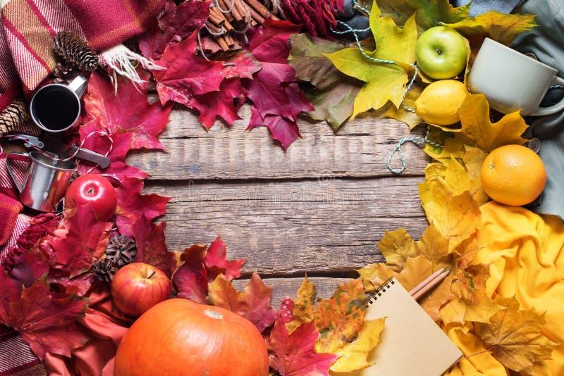 感恩五颜六色的秋天心脏形状叶子 免版税库存照片