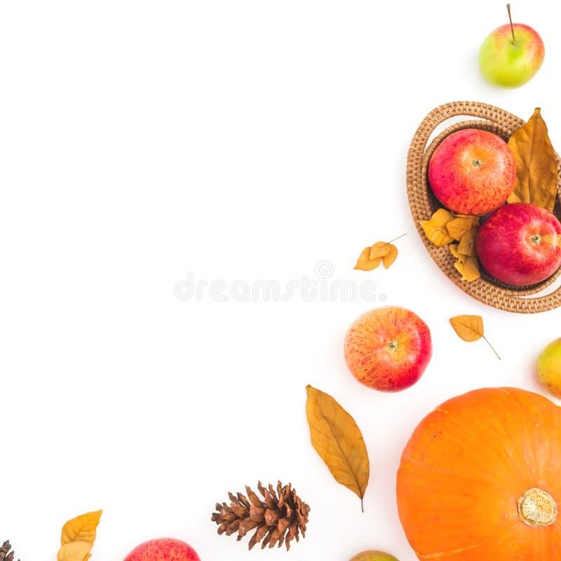 感恩框架由秋天制成烘干了叶子、杉木锥体、苹果和南瓜在白色背景 平的位置,顶视图 秋天混合涂料 免版税库存照片