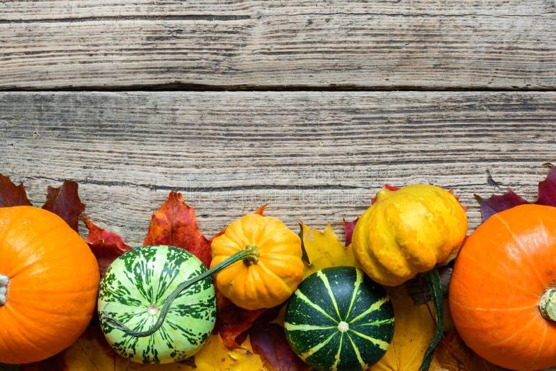 感恩秋天秋天背景用被收获的南瓜、苹果、坚果和槭树叶子 图库摄影
