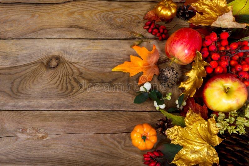 感恩背景用苹果,金黄槭树离开,花揪 免版税库存图片