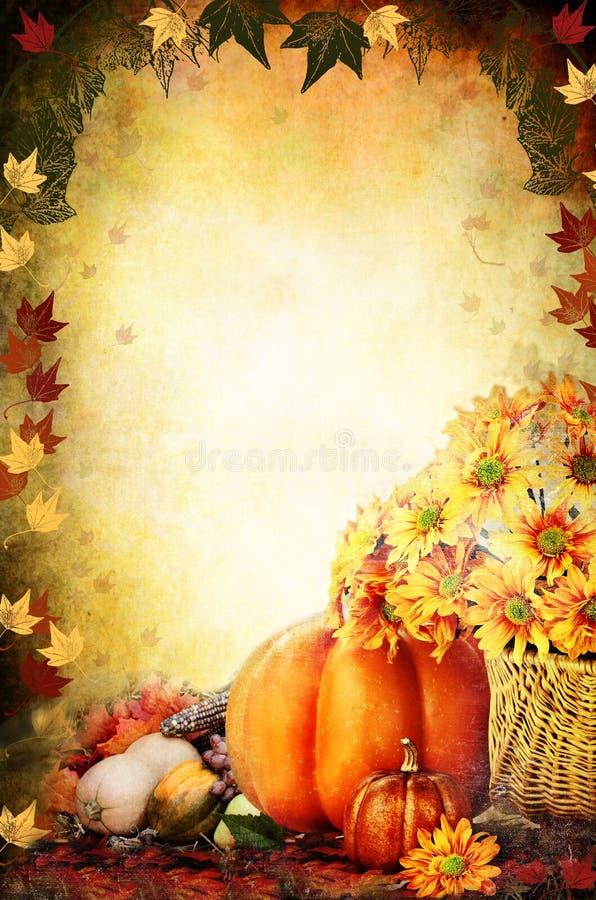 感恩节南瓜和花背景 免版税图库摄影