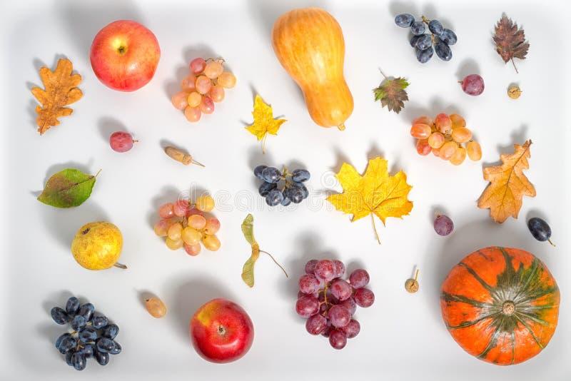 感恩节背景平的位置用苹果,梨, gr 免版税库存照片