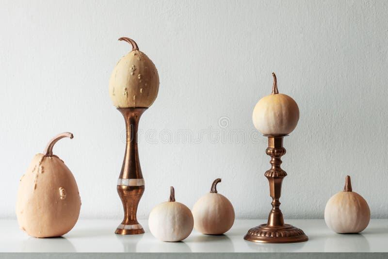感恩装饰 最小的秋天启发了室装饰 各种各样的南瓜的选择在白色架子的 免版税库存照片