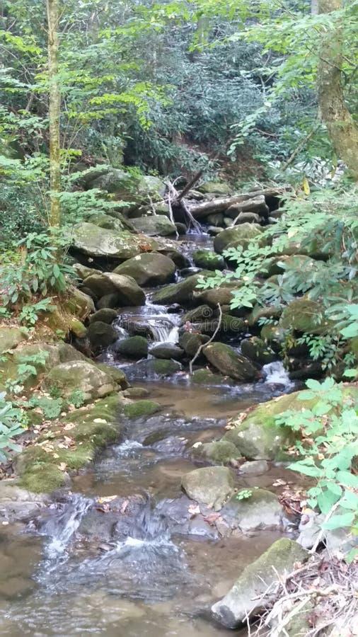 慢慢地流动的瀑布  库存图片