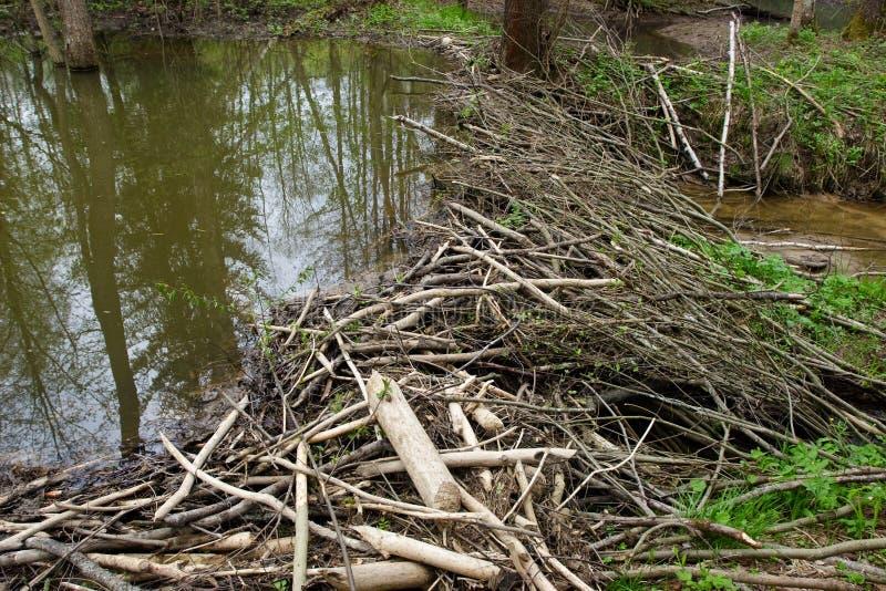 慢慢移动水坝 免版税库存图片