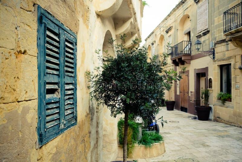 戈佐岛海岛建筑学-马耳他 图库摄影