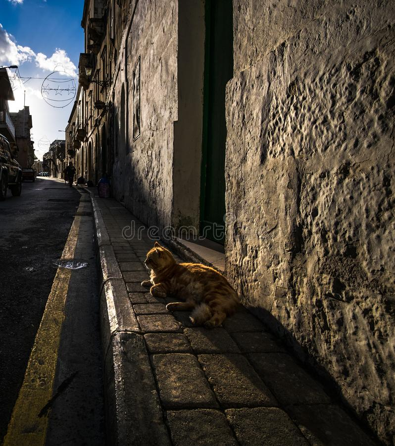 戈佐岛街道  维多利亚 马耳他 免版税库存照片