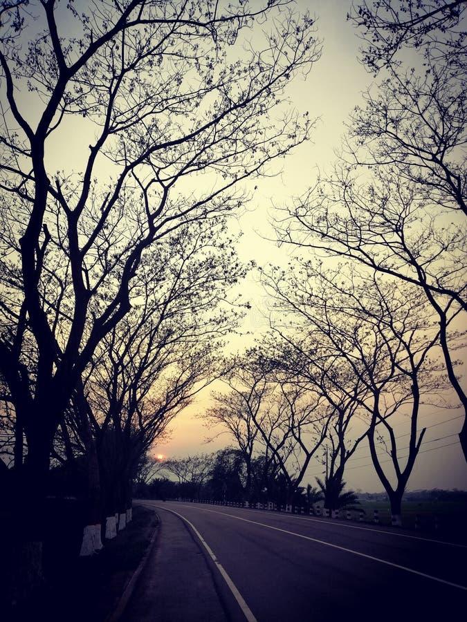 戈帕冈吉孟加拉街路 图库摄影
