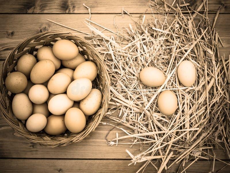 成为不饱和的乌贼属作用,从鸡舍,采取的新鲜的鸡鸡蛋篮子看法对有干草的一个木板 免版税库存照片