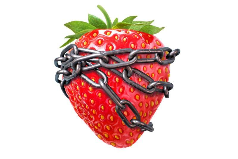 成人美满的想法 年龄限制在以下18,成人的 概念用成熟草莓 图库摄影