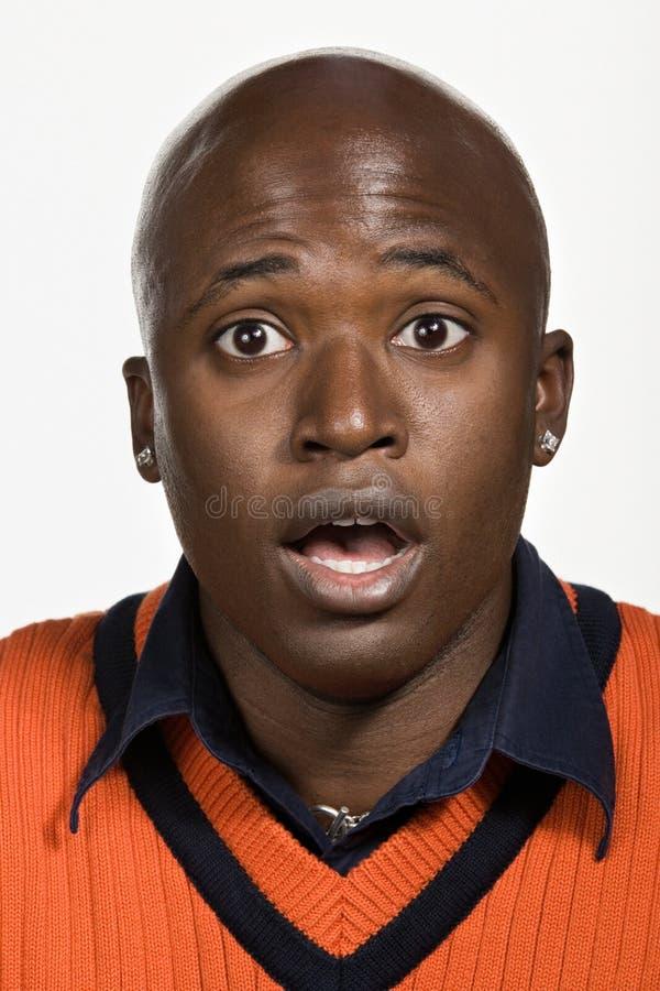 年轻成人非裔美国人的人画象  库存照片