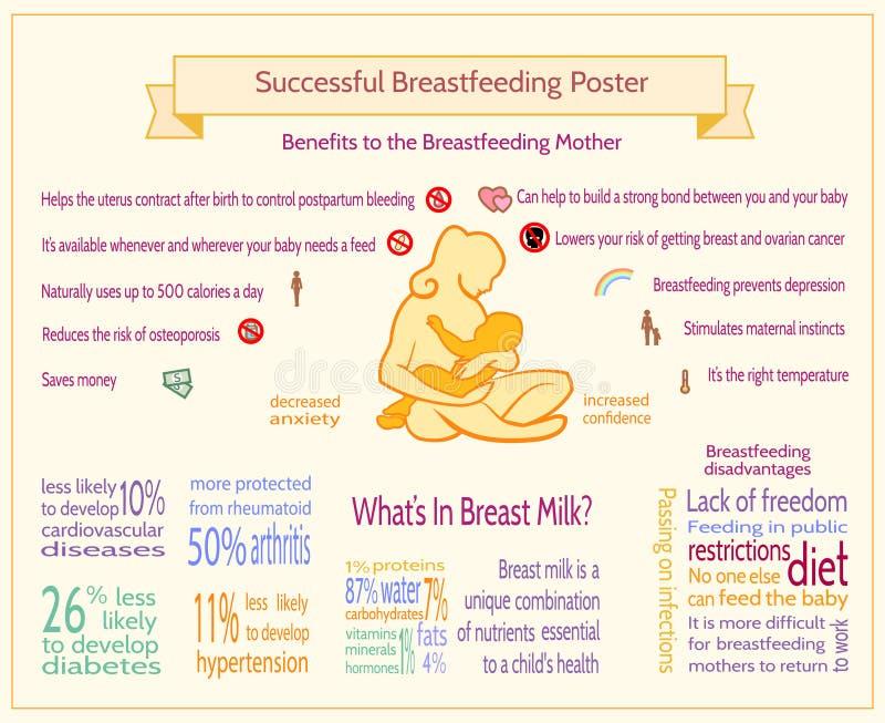 成功的哺乳的海报 产科Infographic模板 向量例证