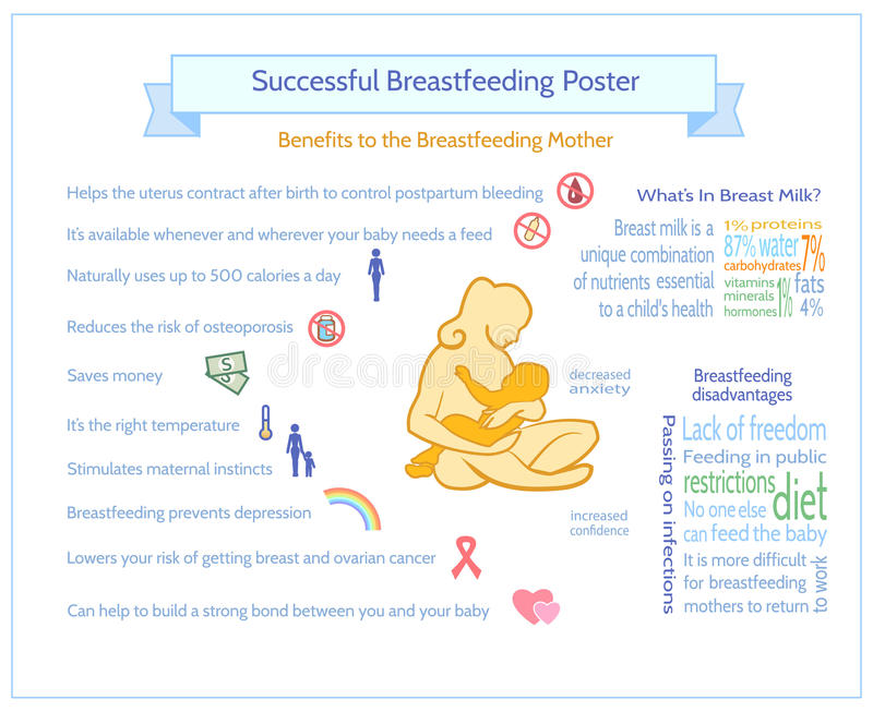 成功的哺乳的海报 产科Infographic模板 皇族释放例证