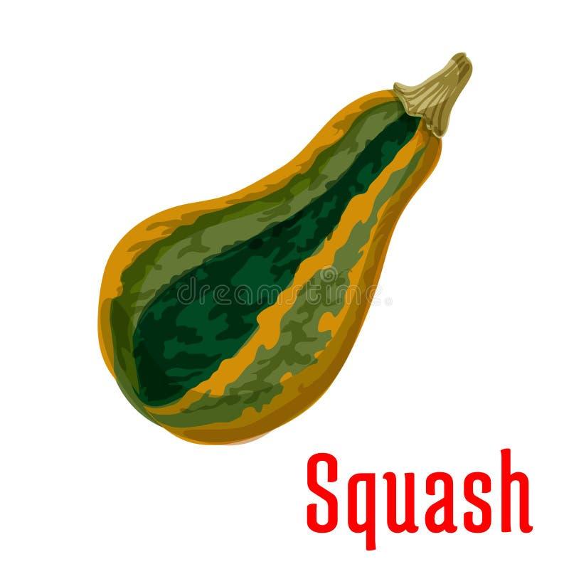 成熟南瓜菜象,动画片样式 皇族释放例证