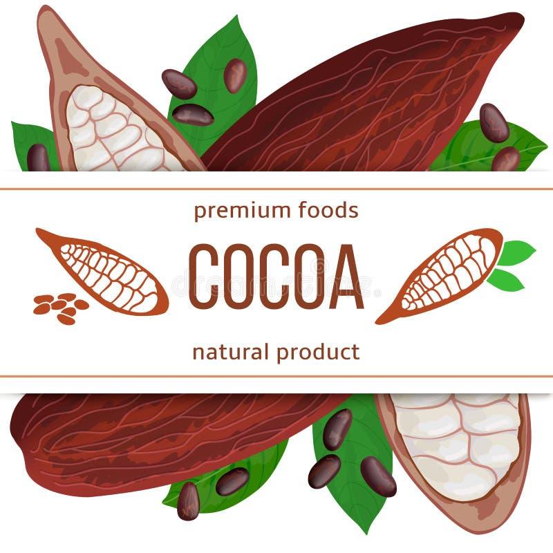 成熟可可粉荚果子、豆和叶子 3d象传染媒介集合 与文本自然食物保险费产品的条纹 水平 向量例证