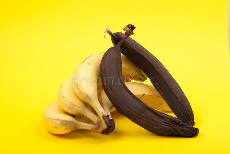 成熟和腐烂的香蕉,黄色背景 免版税库存图片