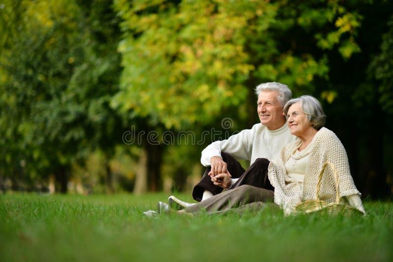 成熟夫妇在公园 免版税库存图片