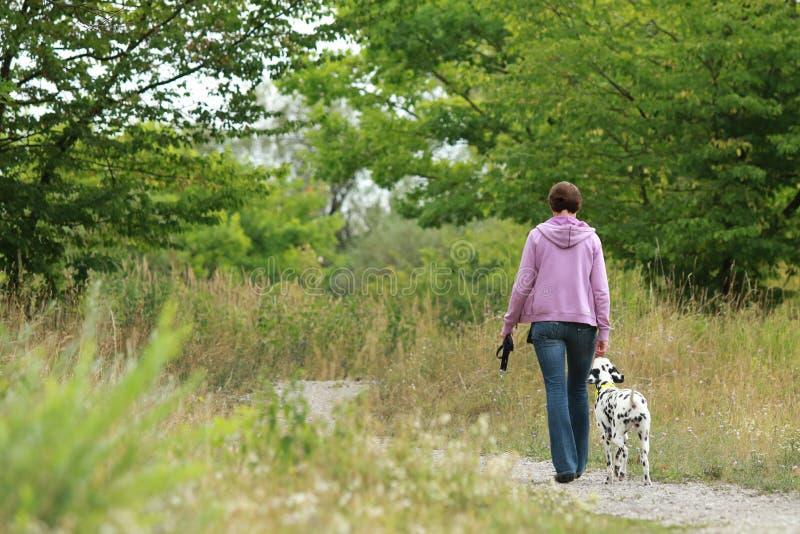 成熟妇女在自然环境fr里遛一条达尔马希亚狗 免版税库存图片