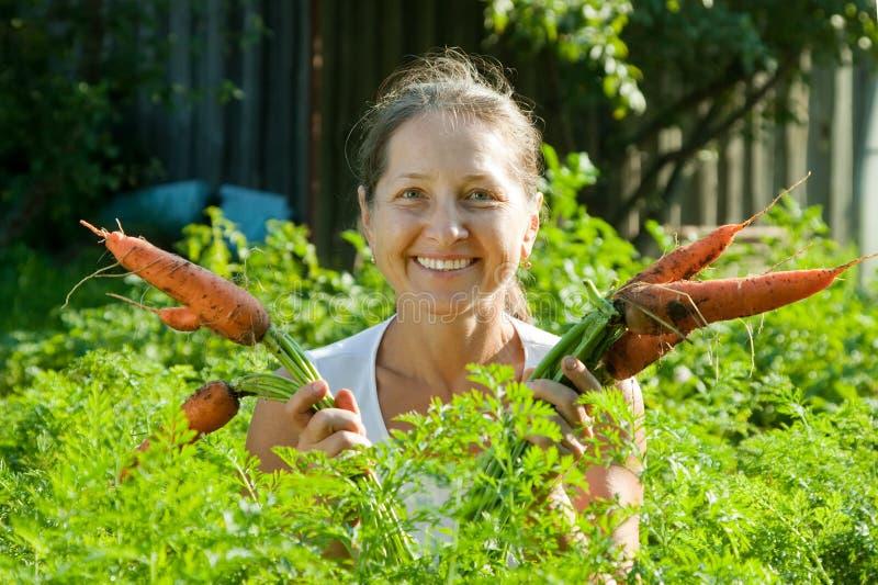 成熟妇女挑选红萝卜 免版税图库摄影