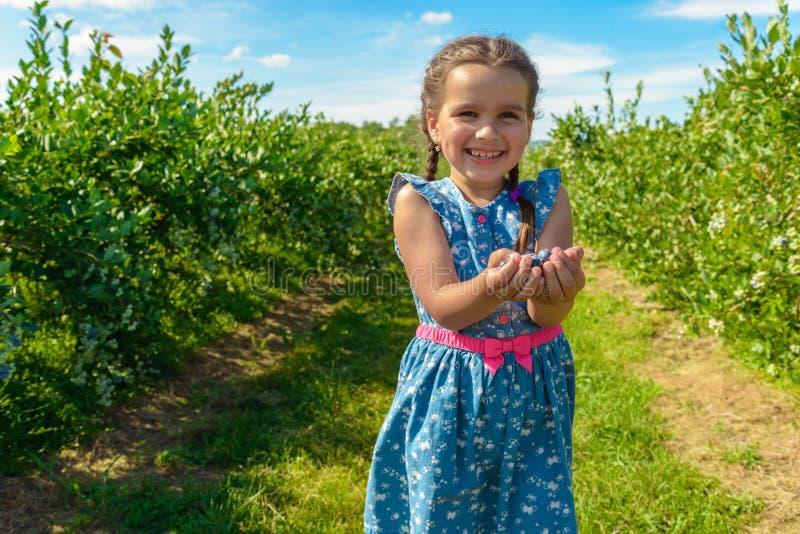 成熟新鲜的蓝莓在女孩手上 免版税库存照片