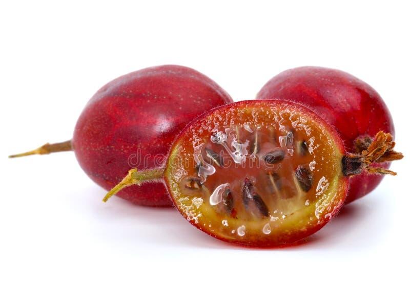 成熟新鲜的鹅莓 免版税库存图片