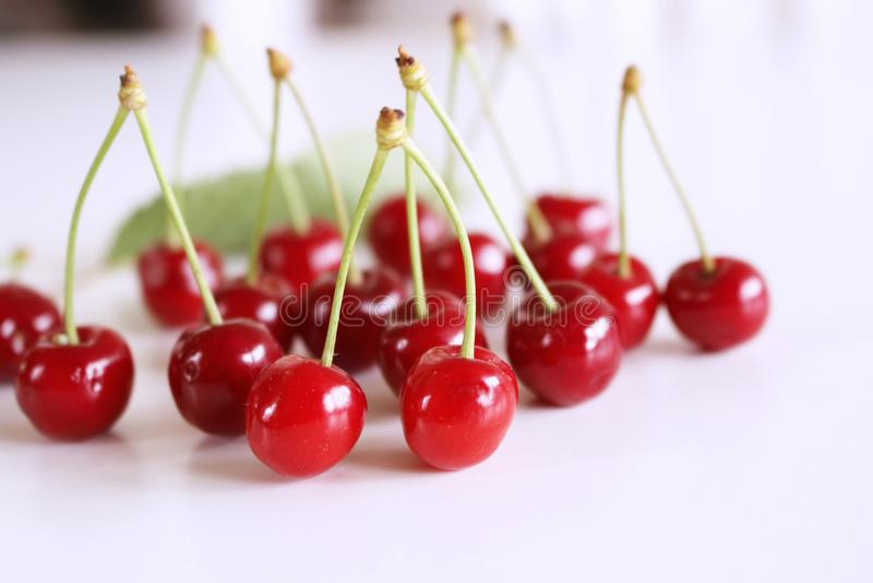 成熟新鲜,有机水多的樱桃细节与在白色背景隔绝的叶子的 高度滋补果子,经常 免版税图库摄影