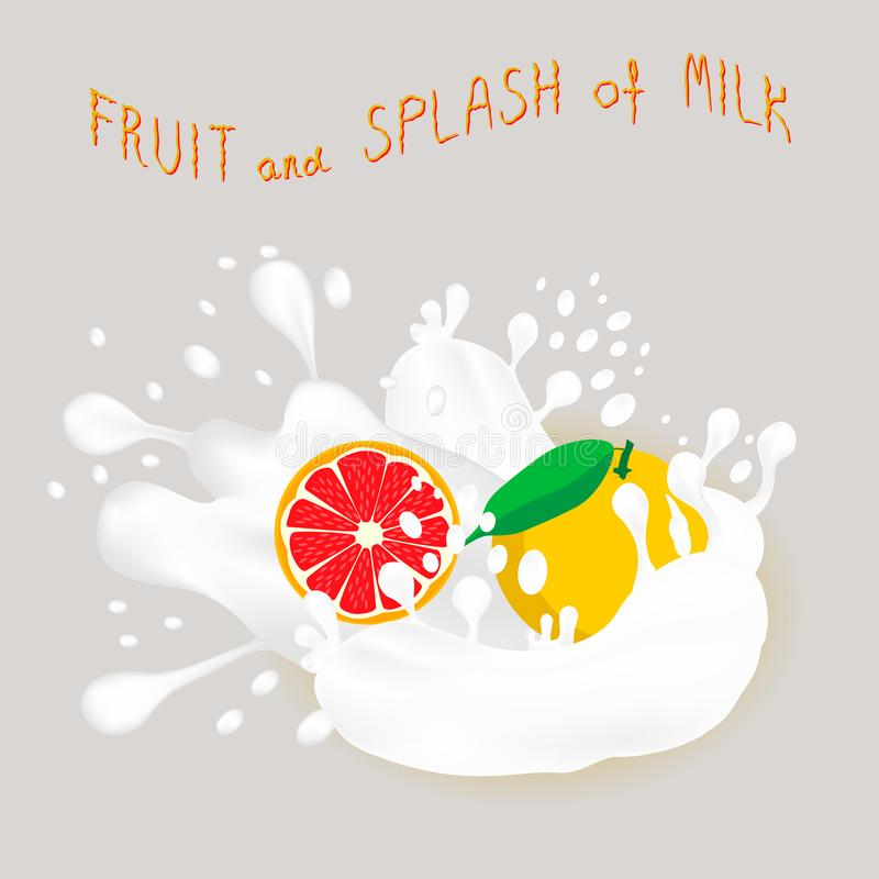 成熟果子红色葡萄柚的传染媒介例证 向量例证