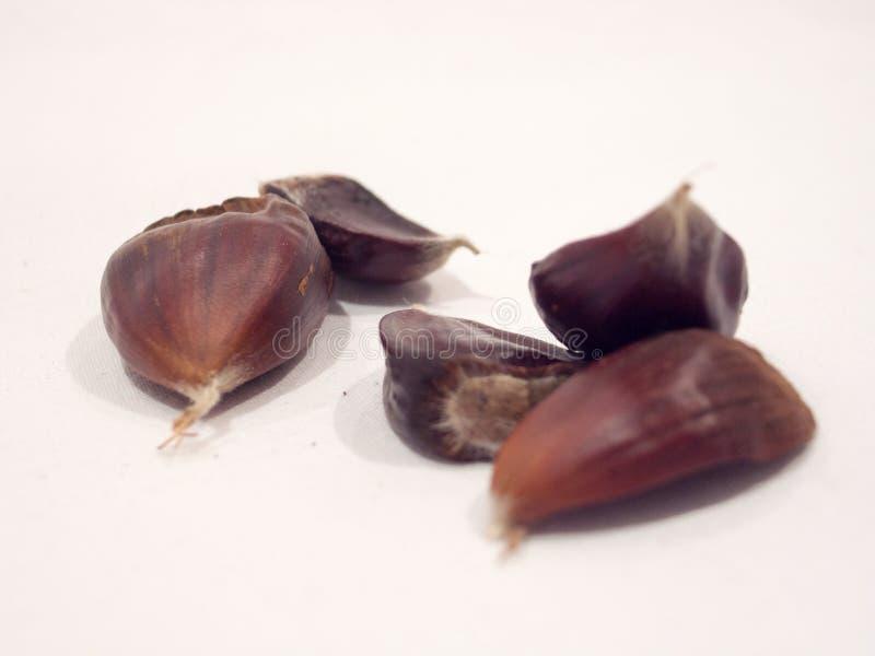 成熟栗子被隔绝的果子  图库摄影