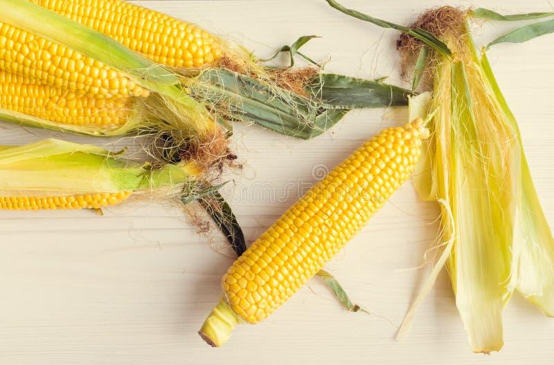 成熟玉米穗在背景的图片