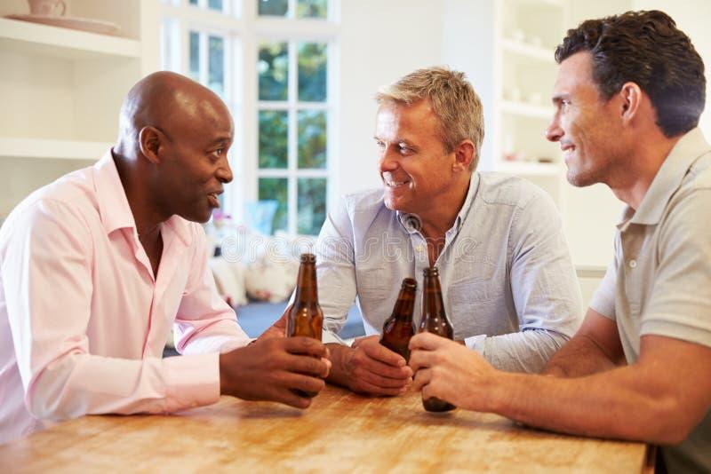成熟男性朋友坐在表饮用的啤酒和谈话 库存图片