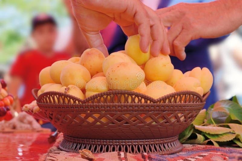 成熟的杏子 库存照片