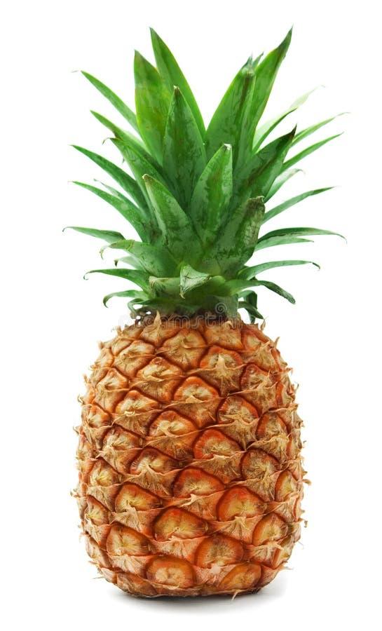 成熟的菠萝 免版税库存图片