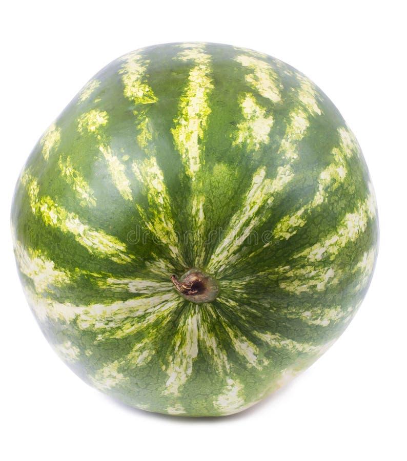 成熟的西瓜 免版税库存照片