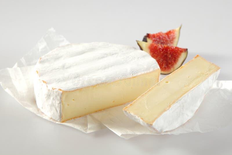 成熟的软的乳脂状的法国软制乳酪乳酪 免版税库存照片