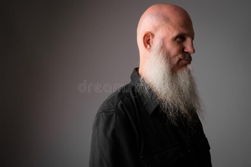 成熟秃头人的面孔外形视图有长的灰色胡子的 库存图片