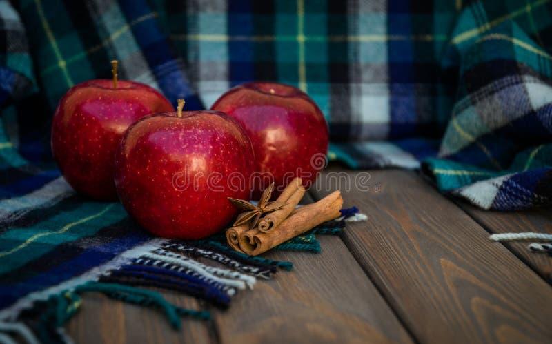成熟秋天苹果和温暖的羊毛围巾 冬天香料 库存图片