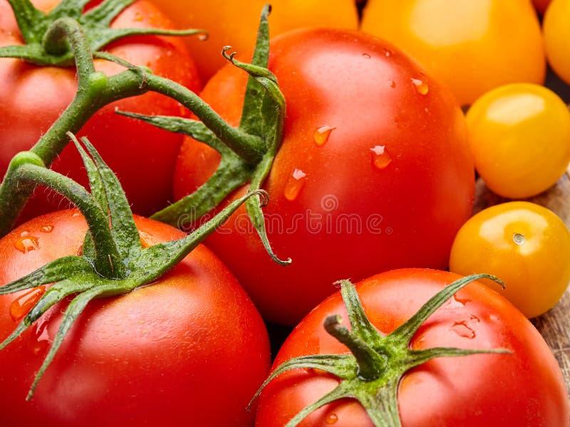 成熟红色和黄色蕃茄关闭与绿色水叶子和滴  免版税库存照片