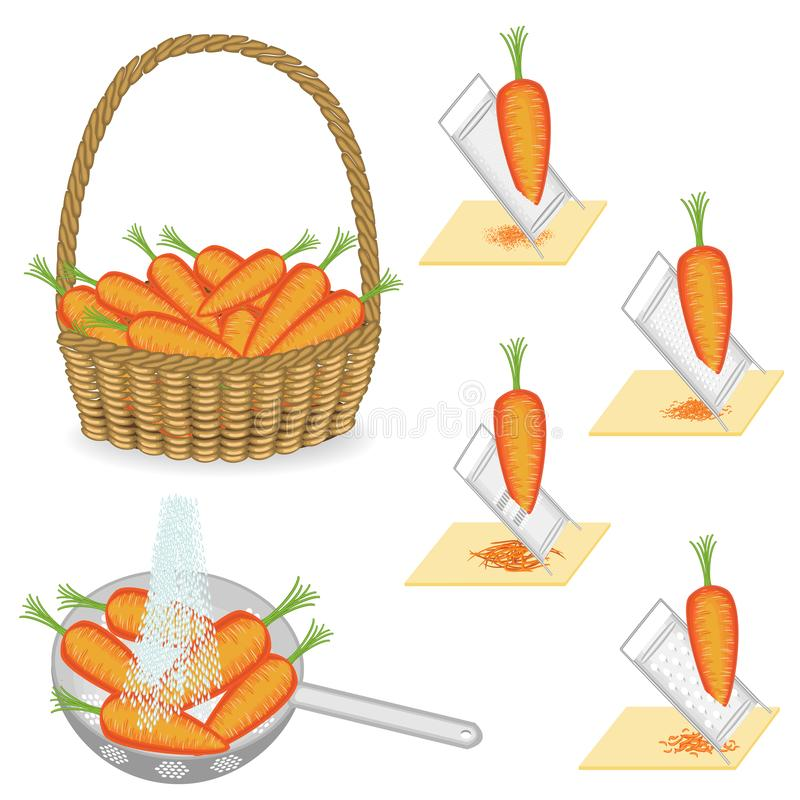 ?? 成熟美丽的红萝卜 菜在篮子收集,洗涤在滤锅用水,在磨丝器的地面 向量例证