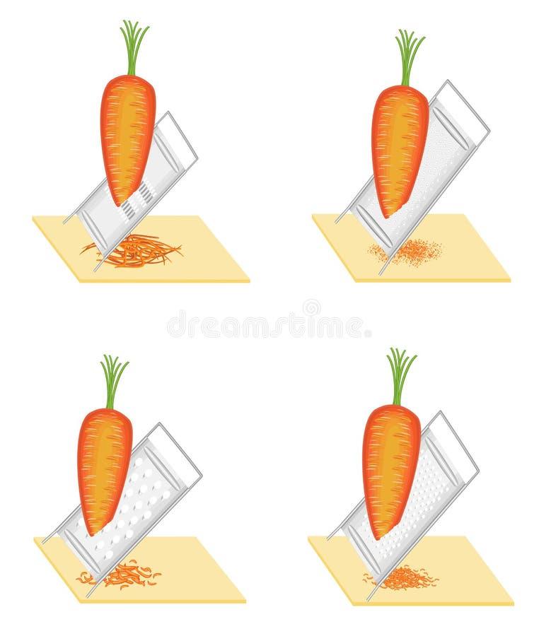 ?? 成熟美丽的红萝卜 菜研到磨丝器 准备鲜美,健康食品 : 向量例证