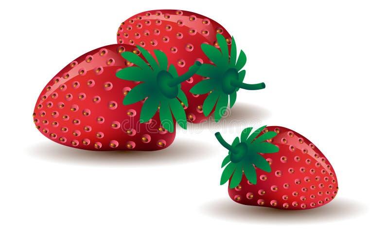 成熟草莓三 皇族释放例证