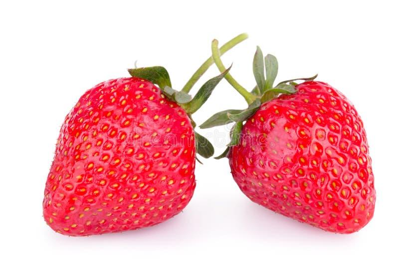 成熟草莓二 免版税库存照片