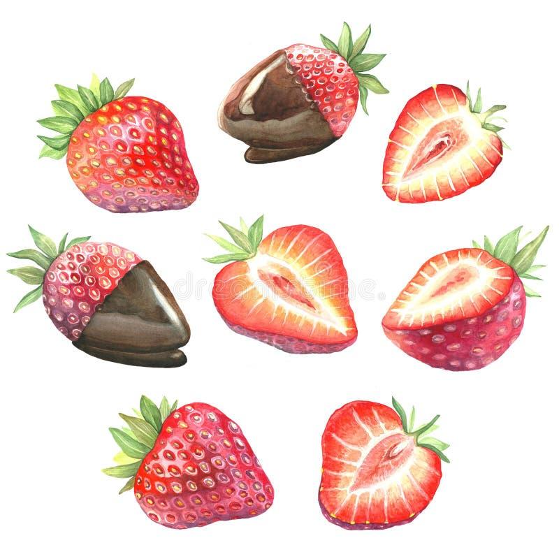成熟草莓的大收藏量 皇族释放例证