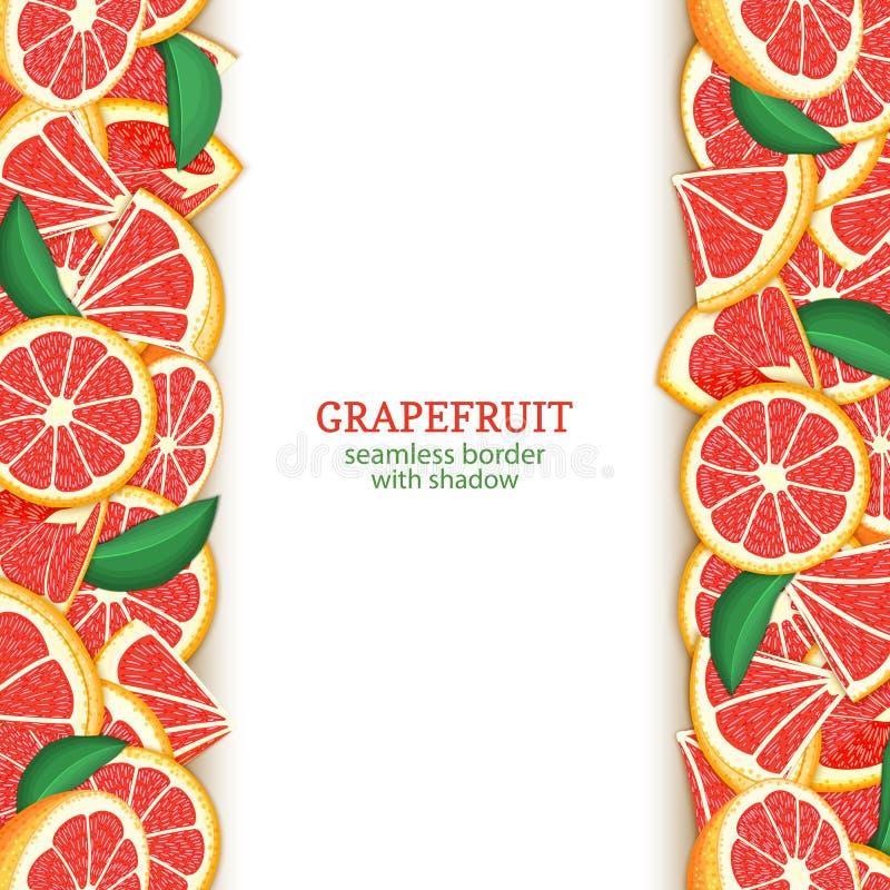 成熟葡萄柚果子垂直的无缝的边界 导航例证卡片宽和狭窄的不尽的小条用红色柚 库存例证