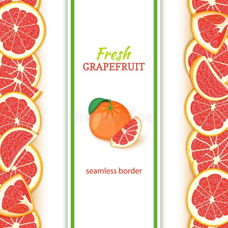 成熟葡萄柚果子垂直的无缝的边界 导航例证卡片宽和狭窄的不尽的小条用红色柚 向量例证