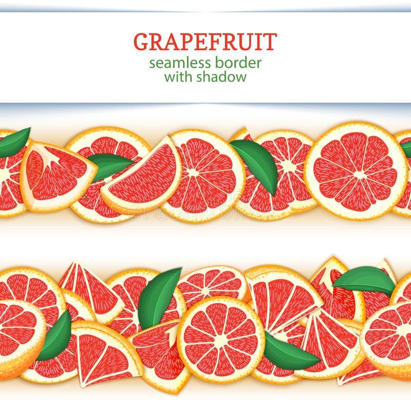 成熟葡萄柚果子水平的无缝的边界 导航与红色的例证卡片宽和狭窄的不尽的小条 库存例证