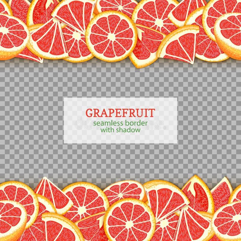 成熟葡萄柚果子水平的无缝的边界 导航与红色的例证卡片宽和狭窄的不尽的小条 皇族释放例证