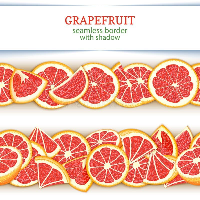 成熟葡萄柚果子水平的无缝的边界 导航与红色的例证卡片宽和狭窄的不尽的小条 向量例证